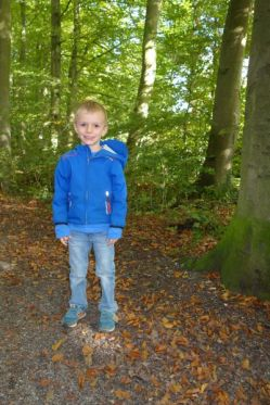 In het bos / In the forest